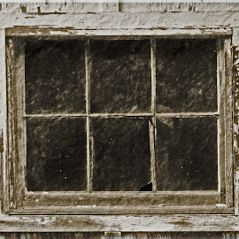 The Abandoned Window by Daryl Peck - Novices Only Objects & Still Life ( old, b&w, window, black and white, rundown, antique, decay )