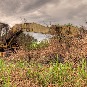 Out Of Comission by Rashid Mohamad - Products & Objects Industrial Objects ( cover, hdr, grass, excavator, digger )