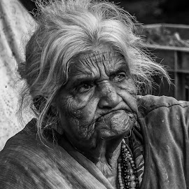 Indian lady  by Peter Schoeman - Black & White Portraits & People ( old, lady, grey, india, hair, eyes )