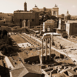 Roman Forum (upper view) by Alin Gavriluta - City,  Street & Park  Historic Districts