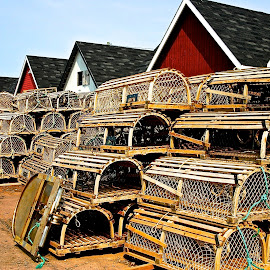 Trapped by David W Hubbs - City,  Street & Park  Street Scenes ( lobster traps, traps, lobster, down east, travel photography, prince edward island )