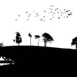 Minimalist view from my house by Stephen Crawford - Illustration Buildings ( bird, farm, black+white, silhouette, trees, back door, bif, annbank,  )