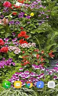 Beautiful Flowers LWP - screenshot
