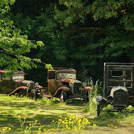by Laddy Kite - Transportation Automobiles