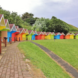 semi circle brightly coloured beach huts by Eloise Rawling - Buildings & Architecture Other Exteriors ( coloured, bright, beach huts, seaside )