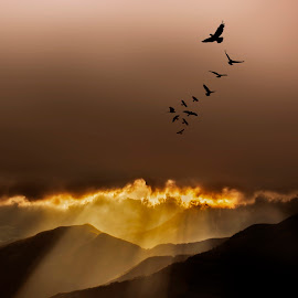 Flying Away by Elena Salvai - Digital Art Places ( mountain, sunset, fine art, landscape, birds, rays )