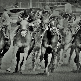 Charging Home by Monroe Phillips - Black & White Sports (  )