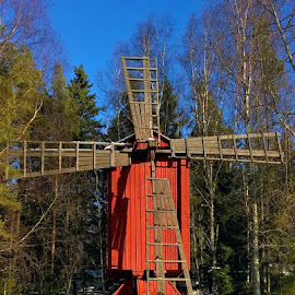 by Torolf Vikars - Buildings & Architecture Public & Historical ( snow, trees, windmill, abandoned )