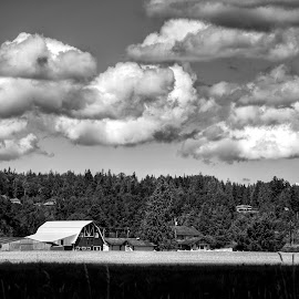 Big Sky  by Todd Reynolds - Black & White Landscapes