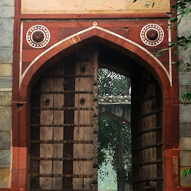 Doorway by Tridibesh Indu - Buildings & Architecture Architectural Detail ( detail, tomb, humayunstomb, doorway, path, door, india, architecture, mughal, medieval, humayun, delhi )