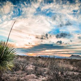 Sunset on the Glass Mountains by Timothy Hess - Landscapes Deserts ( ranch, marathon tx, desert, sunset, spring break, leonard mountain )