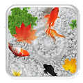 Free Download KOI Cool Fish Live Wallpaper APK for Samsung