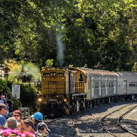 by Cora Lea - Transportation Trains