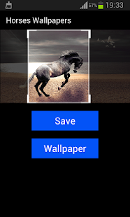 Horses Wallpapers - screenshot
