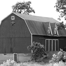 On The Farm 3 Black And White by RMC Rochester - Black & White Buildings & Architecture ( abstract, nature, barn, black and white, random, architecture,  )