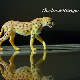 the lone ranger by Pradeep Kumar - Typography Captioned Photos