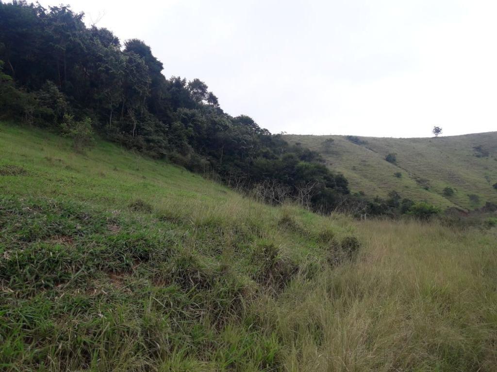 Fazenda / Sítio à venda em Werneck, Paraíba do Sul - RJ - Foto 8