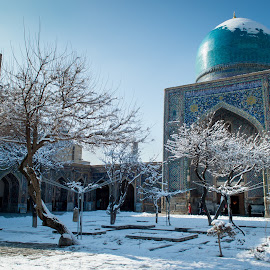 Winter in Samarkand (Uzbekistan) by Sergey Sibirtsev - Buildings & Architecture Public & Historical ( winter, tree, samarkand, mosque, snow, uzbekistan )
