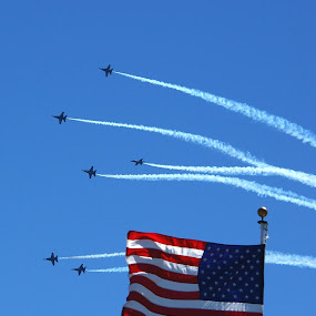 Blue Angels are Patriotic by Darrin Halstead - Transportation Airplanes ( aviation, flag, sky, patriotic, airplane, airshow,  )
