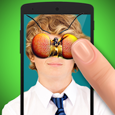 Ant insect Photo Editor