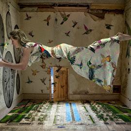 Dreamworld III by Katherine Rynor - Digital Art People ( levitation, dress, door, lady, clocks, birds, room )