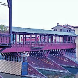 Bassano del Grappa by Will McNamee - City,  Street & Park  Historic Districts ( dld3us@aol.com, gigart@aol.com, aundiram@msn.com, danielmcnamee@comcast.net, mcnamee2169@yahoo.com, ronmead179@comcast.net,  )