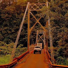 by Steve Tharp - Buildings & Architecture Bridges & Suspended Structures