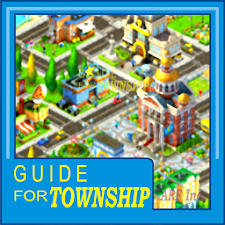 Guide for Township game
