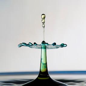 Sending by Dov Plawsky - Abstract Water Drops & Splashes ( water, studio, flash, 150mm, drop, green, yellow, high speen, macro, drip kit, sigma, blue, d90, nikon )