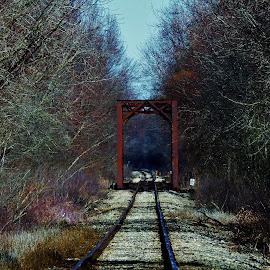 Iron Train Bridge by Kathy Woods Booth - Buildings & Architecture Bridges & Suspended Structures ( train tracks, train, bridge, landscape, iron )