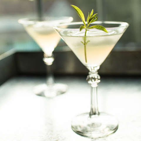 Lemon Verbena Gimlet Cocktail | Tipsy Tuesday