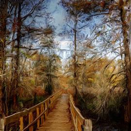Walkway at Lake Martin by Ron Olivier - Digital Art Things ( walkway at lake martin,  )