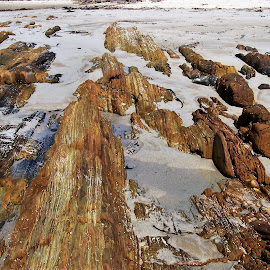 Mallacoota by Sarah Harding - Novices Only Landscapes ( novices only, summer, beach, landscape, rocks )