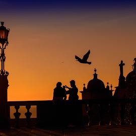 Silhouettes by Maria Alexandra Abrunhosa - City,  Street & Park  Street Scenes