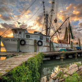 Summers at the Dock by Jason Green - Transportation Boats