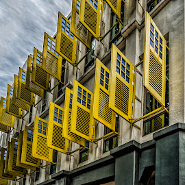 Yellow Windows by Gordon Koh - Buildings & Architecture Other Exteriors