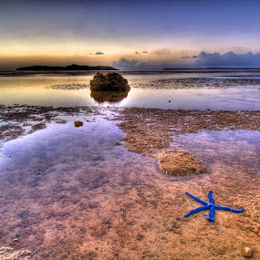 In the Wading Pool by Joshua T. Wood - Landscapes Waterscapes ( guam, sunset, starfish, agat, lowtide )