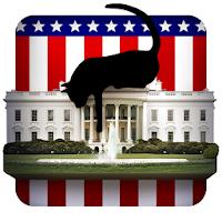 House of Cats pour PC (Windows / Mac)
