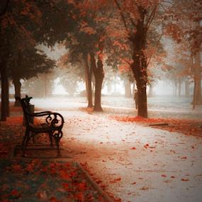 by Sanja Dedić - City,  Street & Park  City Parks (  )