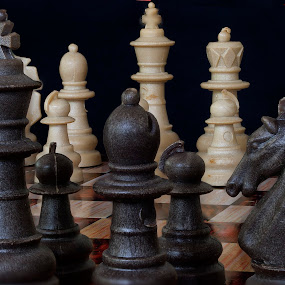 Chess Pieces Three by Joe Saladino - Artistic Objects Other Objects ( chess, strategy, game, king, pawn, FocusStacking,  )