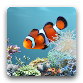 Download Ocean Fish HD Live Theme APK to PC