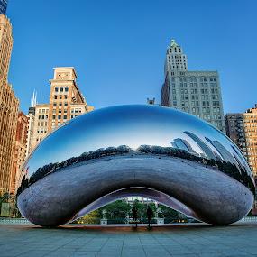 Bean by Jim Hamel - Buildings & Architecture Statues & Monuments ( illinois, bean, millenium park, cloud gate, chicago )