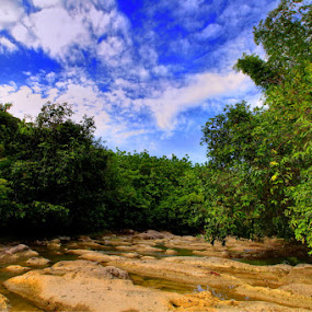Dung Sewu,Ploso - Jombang - East Java by Michael Chen - Landscapes Forests