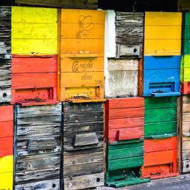 311.. by Andrej Bojnec - Buildings & Architecture Homes ( bee, colors, slovenia, apiary, honey, animal )