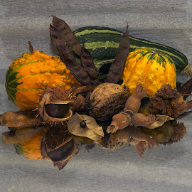 autumn is here by LADOCKi Elvira - Artistic Objects Other Objects