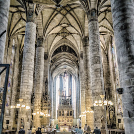 Cathedral of St. Bartholomew by Adam Lang - Buildings & Architecture Places of Worship ( church, cathedral of st. bartholomew, czech, cathedral, plzen )