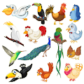 Game Birds - Learn, Spell, Quiz, Draw, Color and Games apk for kindle fire
