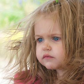 Lil Camper by Kellie Jones - Babies & Children Children Candids ( Emotion, portrait, human, people,  )