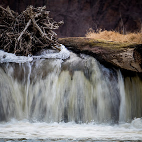 Falls by Todd Wallarab - Landscapes Waterscapes ( water, blue, logs, falls, nest, wet, river )