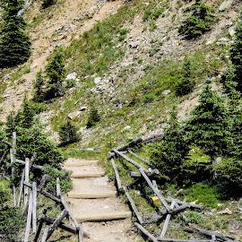 Steps in Time by Deborah Lucia - Uncategorized All Uncategorized ( fence, mountain, trees, steps )